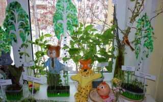 Посадили огород посмотрите что растет