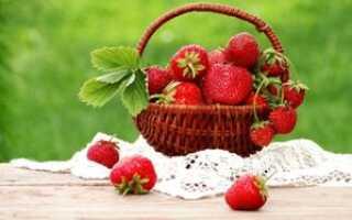 Сорт клубники виноград фото и описание