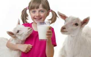 Сколько коза дает молока за раз