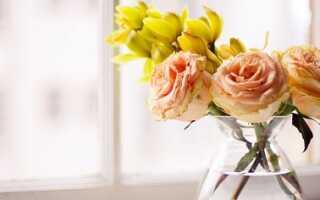 Завяли розы в вазе что делать