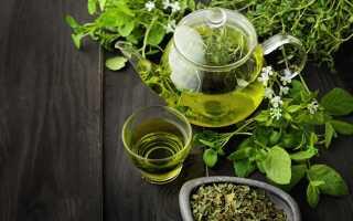 Чай из мелиссы рецепт