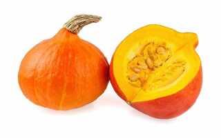 Тыква оранж саммер f1 отзывы