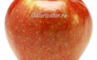 Много ли калорий в яблоках