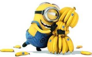 Как настаивать кожуру банана для полива цветов