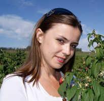Посев укропа осенью в открытый грунт