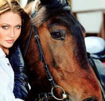 Сонник скакать на лошади без седла