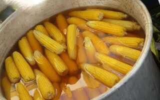 Кукуруза это бобовые или злаковые