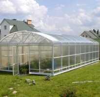 Современные теплицы для выращивания зимой