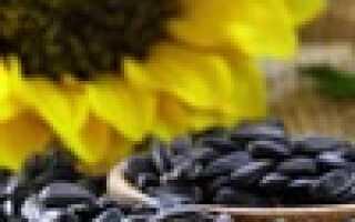 Чем разбавить растительное масло