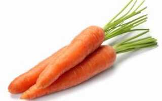 Когда морковь появилась в россии
