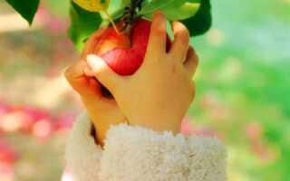 Сколько железа в яблоке в граммах