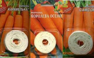 Как наклеить морковь на туалетную бумагу видео