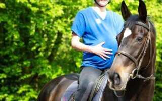 Можно ли беременным кататься на лошадях