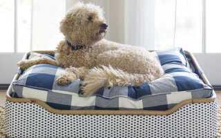 Лежак для собаки из поддонов