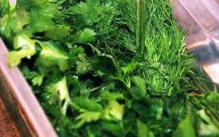 Как сохранить зелень в холодильнике на зиму