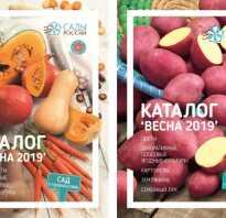 Сады россии заявка на семена бланк