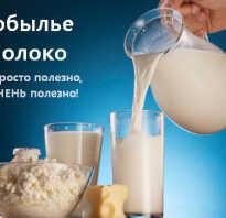 Молоко лошади как называется