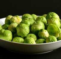 С какого возраста можно давать брюссельскую капусту