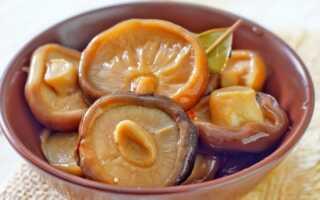 Как приготовить грибы рыжики на зиму маринованные