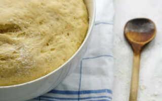 Как приготовить тесто для пирожков видео