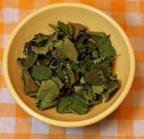 Чай из листьев земляники полезные свойства
