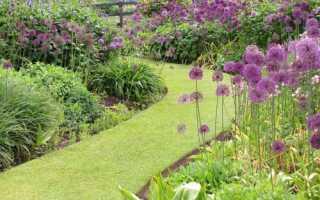 Как отделить цветник от газона