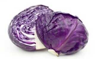Рецепт засолки синей капусты на зиму