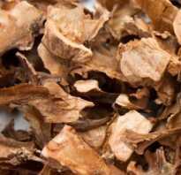 Перепонки грецкого ореха настойка на водке польза