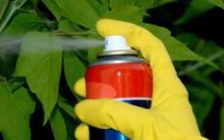 Системные фунгициды для комнатных растений